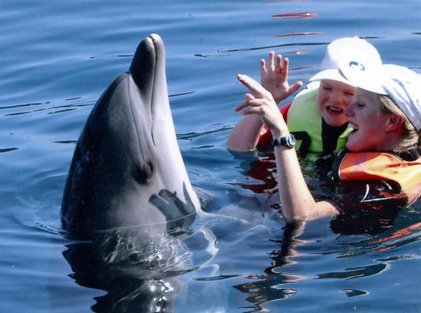 Dolphin-therapy