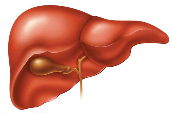 Take-care-of-your-liver
